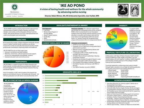 photo of IKE AO PONO poster
